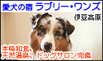 愛犬の宿ラブリー・ワンズ