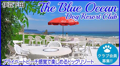 ザ・ブルーオーシャン・ドッグリゾートクラブ
