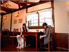 ホテルグリーンプラザ軽井沢 width=