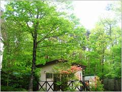 森のコテージくるみの木